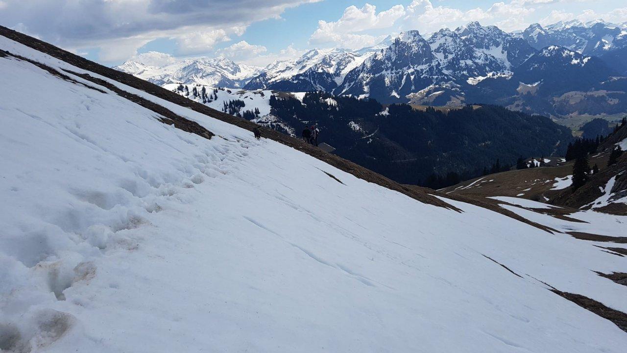 Premiers pas sur un glacier et découverte de la montagne