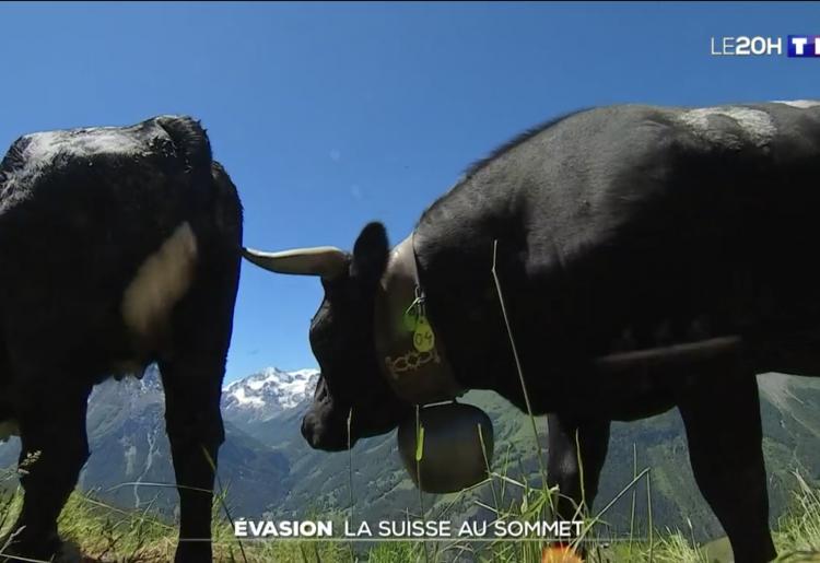 TF1 de retour dans le Val d'Hérens !